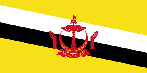Brunei flag small