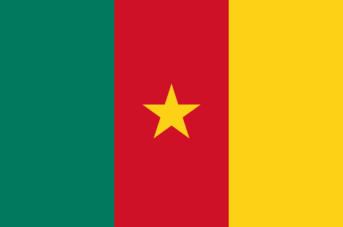 Cameroon flag small