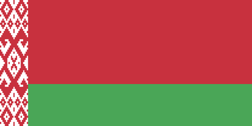 Belarus flag small
