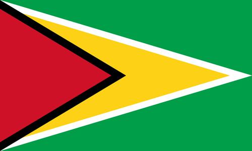 Guyana flag small