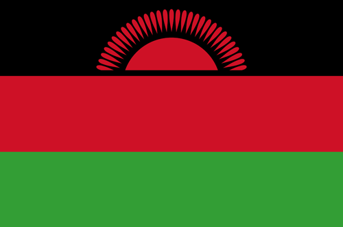 Malawi flag small