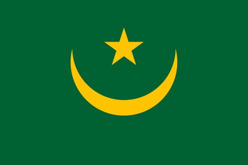 Mauritania flag small