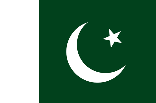 Pakistan flag small