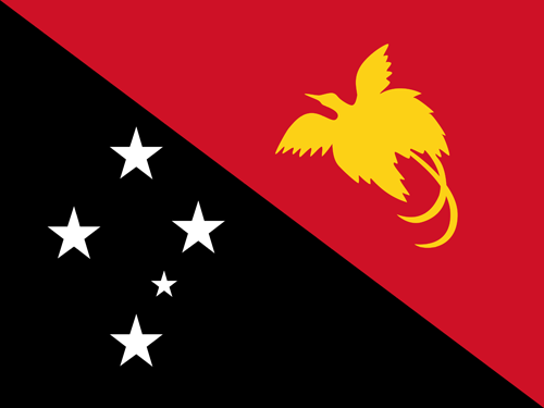 Papua new guinea flag small