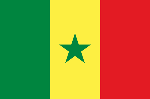 Senegal flag small