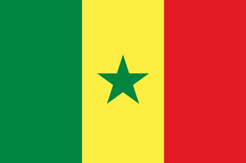Senegal flag small