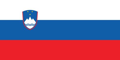 Slovenia flag small