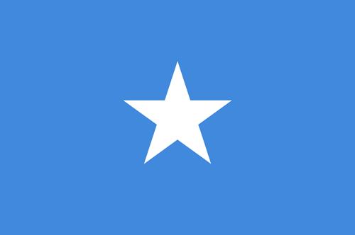 Somalia flag small