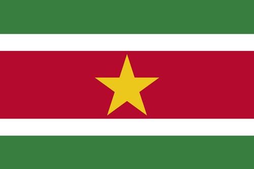 Suriname flag small