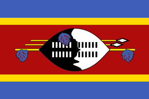 Swaziland flag small