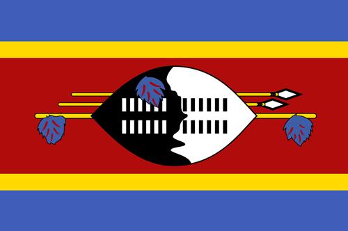 Swaziland flag small