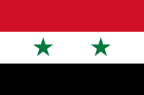 Syria flag small