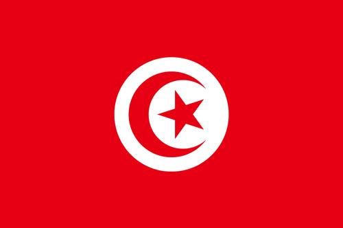 Tunisia flag small