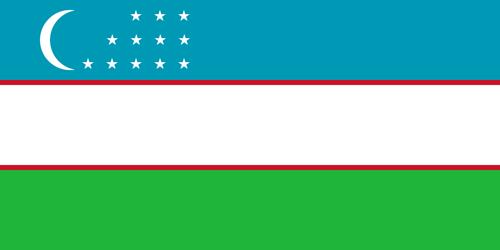 Uzbekistan flag small